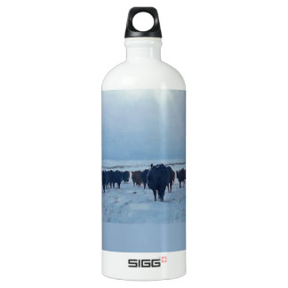 Christian western art of cattle and cows water bottle
