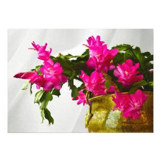 Christmas Cactus Closeup Photograph Invitation