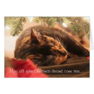 Christmas Dreams, Sleeping Calico, Personalize Card
