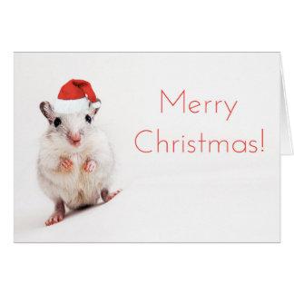 Christmas Gerbil Santa Hat Gerbils Santa Clause Greeting Card