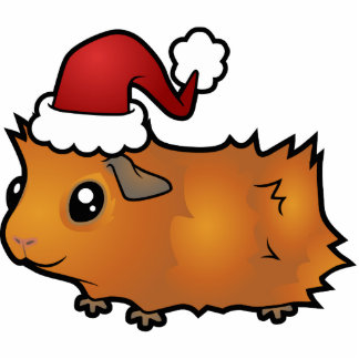 Christmas Guinea Pig Ornament (scruffy) Photo Cut Out