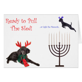 Christmas Hanukkah Poodle Dog w Menorah Card