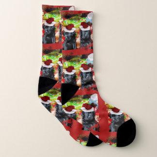 Christmas Labrador Retrievers  dog socks 1