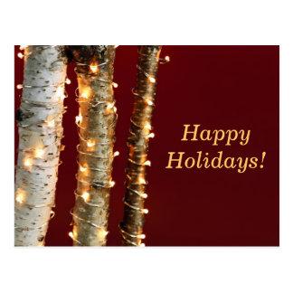 Christmas lights on birch trunks postcard