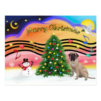 Christmas Music 2 - Bull Mastiff Postcard