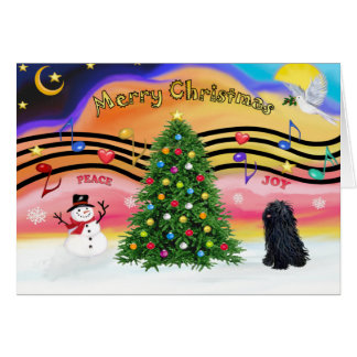 Christmas Music 2 - Pulli Card
