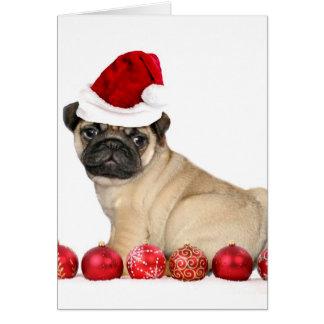 Christmas pug dog card