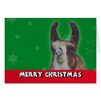 Christmas Stud Llama Happy New Year Greeting Card