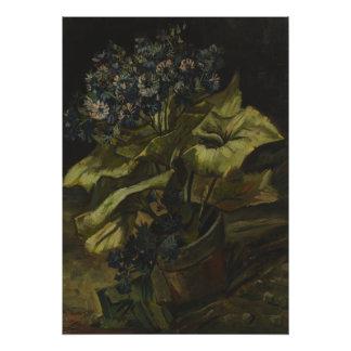 Cineraria by Vincent Van Gogh Photo Print