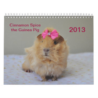 Cinnamon Spice 2013 Calender Wall Calendars
