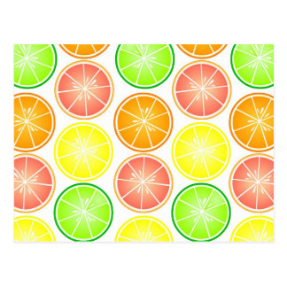 Citrus Fruit Print - Lemon Lime Orange Grapefruit Postcard