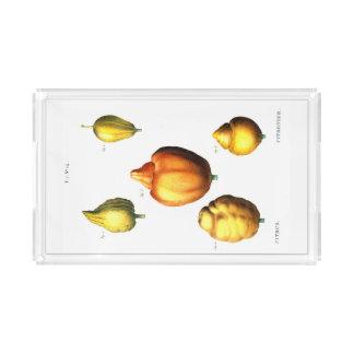 Citrus Serving Tray
