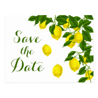 Citrus Yellow Save the Date Lemon Green Engagement Postcard