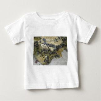 Clams Baby T-Shirt