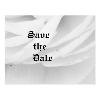 Classic Black and White Wedding Postcards