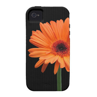 Classy Orange Gerbera Daisy on Black Case For The iPhone 4