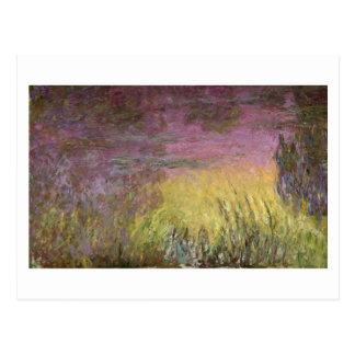 Claude Monet   Waterlilies at Sunset Postcard