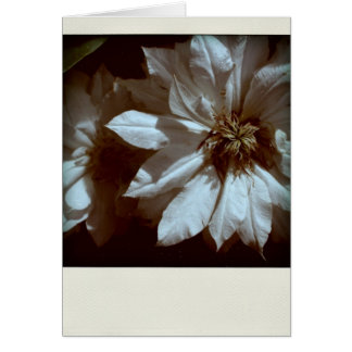 Clematis 2 Condolences Sympathy Note card