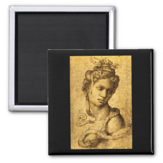 Cleopatra', Michelangelo_Studies of the Masters Magnet