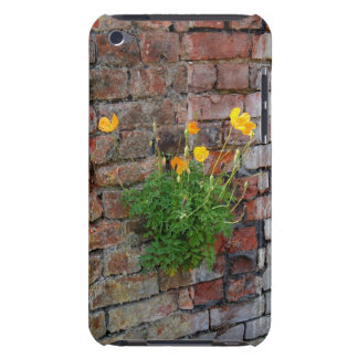 Clinging On Poppy iPod Touch Case