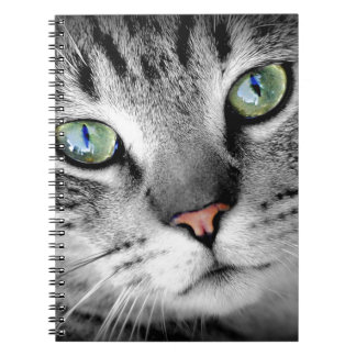 Close up cat photo spiral notebook