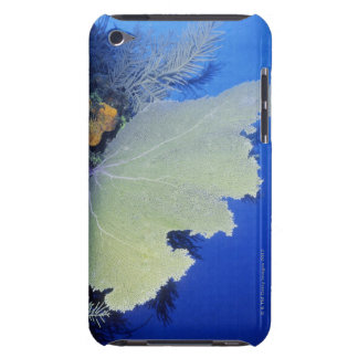 Close-up of a Common Sea Fan iPod Touch Case-Mate Case
