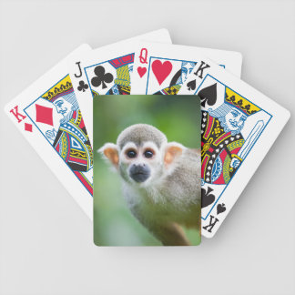 Close-up of a Common Squirrel Monkey Bicycle Playing Cards