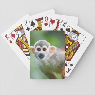 Close-up of a Common Squirrel Monkey Playing Cards