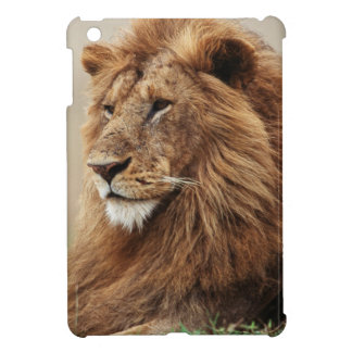 Close-up of male Lion Case For The iPad Mini