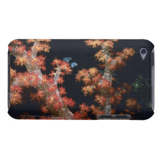 Close-up of Orange Soft Coral underwater, Palau Case-Mate iPod Touch Case
