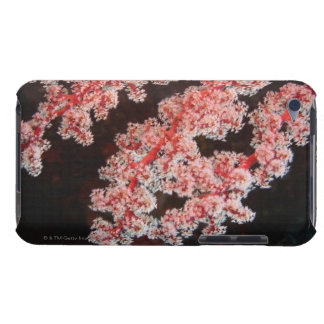 Close-up of Sea Fan underwater, North Sulawesi iPod Touch Cover