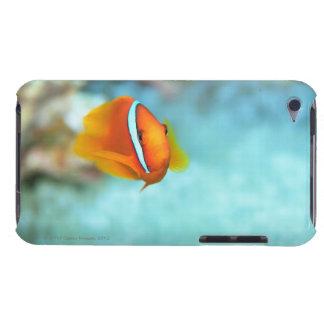 Close-up of tomato anemone fish, Okinawa, Japan iPod Touch Case