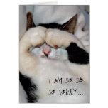 closed eye kitty, i am so so so sorry... cards