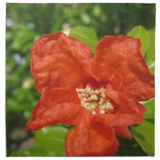 Closeup of red pomegranate flower napkin
