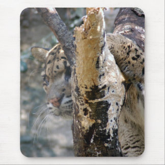 clouded leopard 12 mouse pad