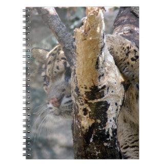 clouded leopard 12 spiral note books