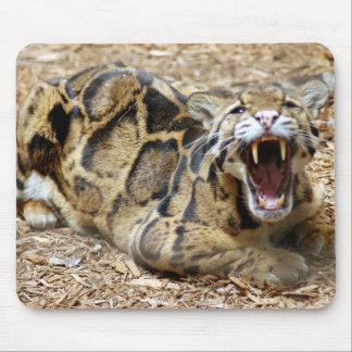 clouded leopard 16 mouse pad