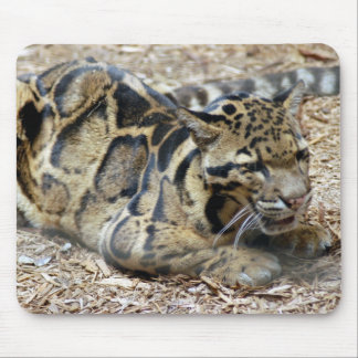 clouded leopard 17 mouse pad