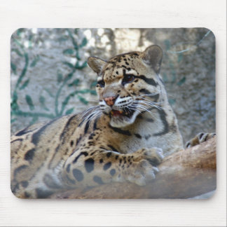 clouded leopard-1 mouse pad