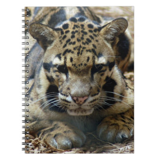 clouded leopard 8 note books