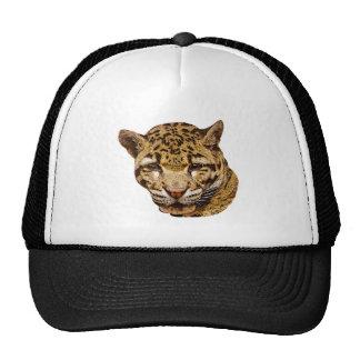 Clouded Leopard Cap