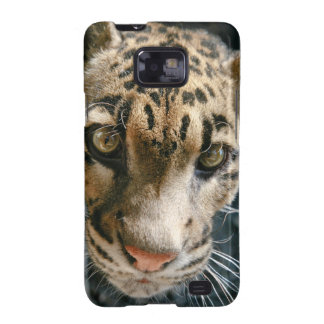 Clouded Leopard Samsung Galaxy S2 Covers