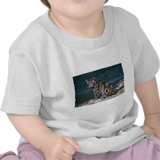 Clouded Leopard-eye contact T Shirts