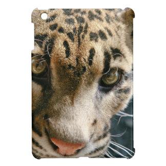 Clouded Leopard iPad Mini Case
