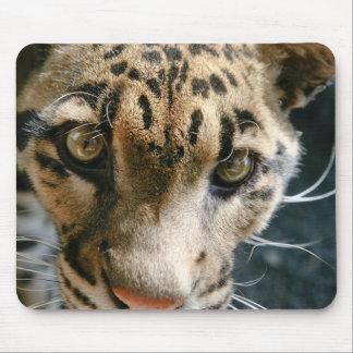 Clouded Leopard Mousepads
