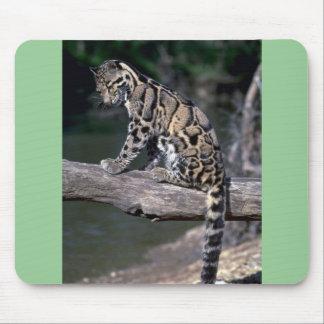 Clouded leopard on log mousepads