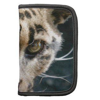 Clouded Leopard Folio Planners