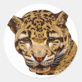 Clouded Leopard Round Sticker