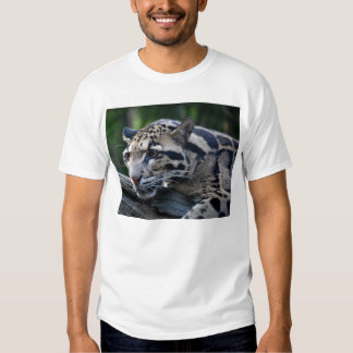 Clouded leopard t-shirts