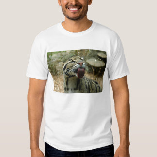 Clouded Leopard Tees